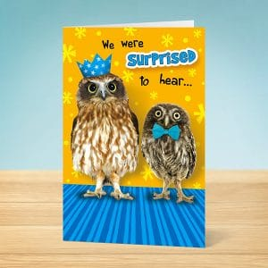 Birthday Card Oul Owls