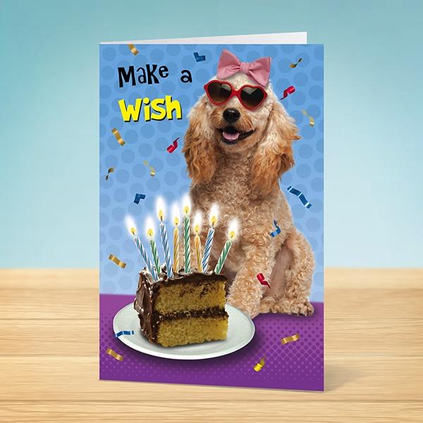 Birthday Card Make A Wish Dog