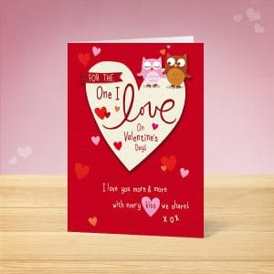 Owl Love Valentine's Card Front