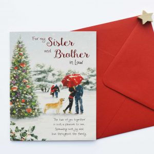 sister and brother christmas card